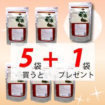 アンズ田七人参5+1